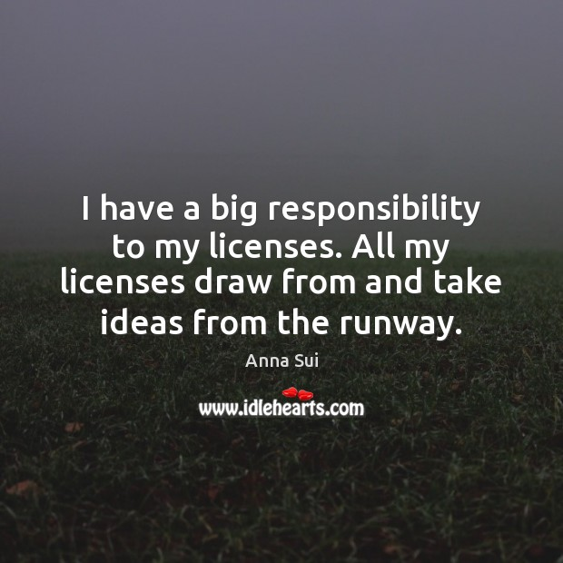 Image, I have a big responsibility to my licenses. All my licenses draw