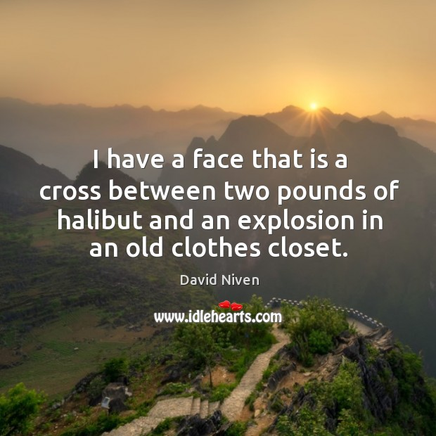 Picture Quote by David Niven