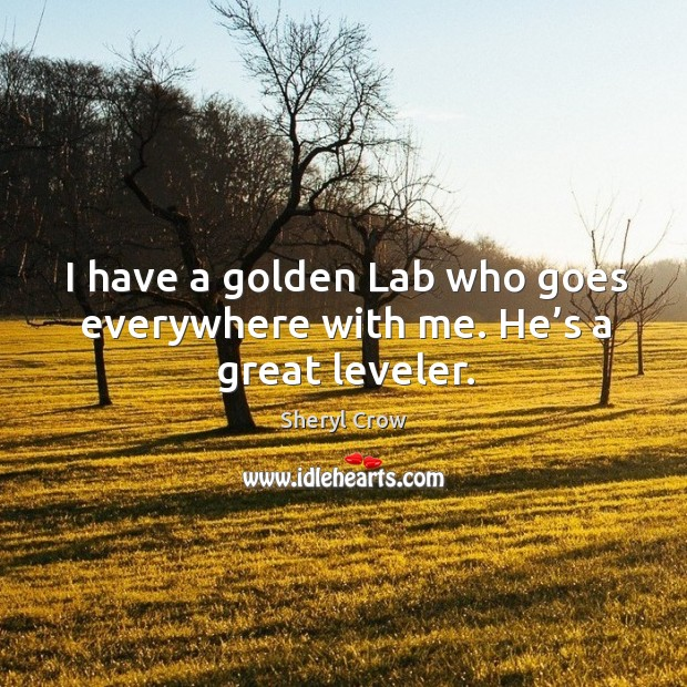 I have a golden lab who goes everywhere with me. He's a great leveler. Image
