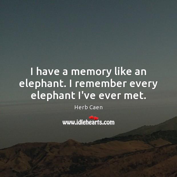 I have a memory like an elephant. I remember every elephant I've ever met. Image