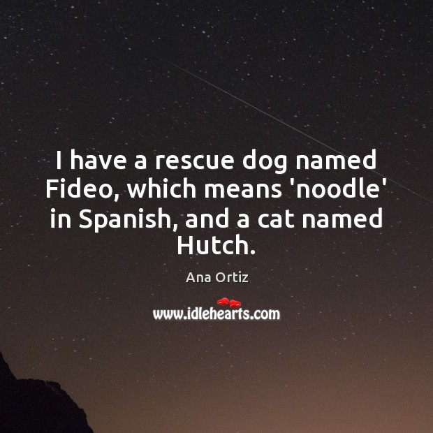 Image, I have a rescue dog named Fideo, which means 'noodle' in Spanish, and a cat named Hutch.