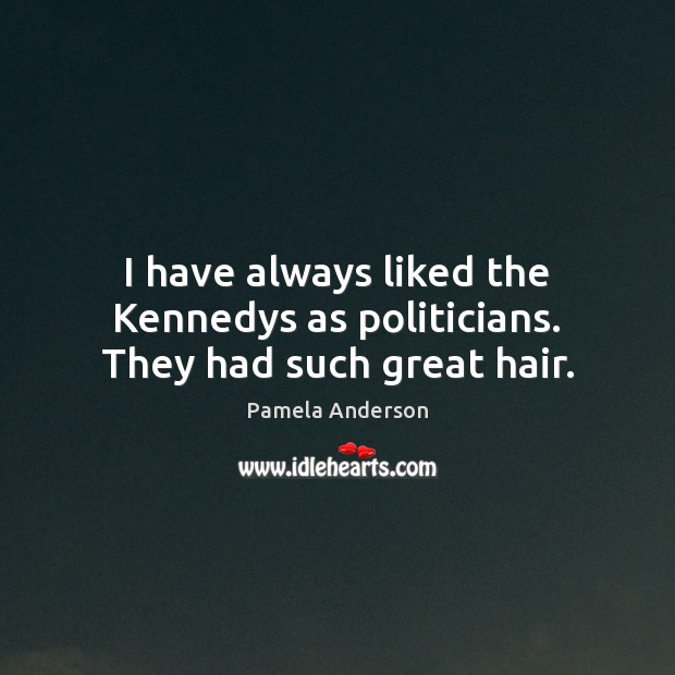 I have always liked the Kennedys as politicians. They had such great hair. Image
