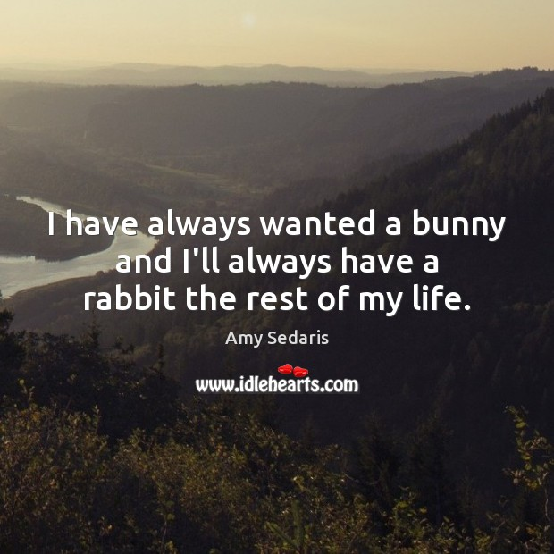 I have always wanted a bunny and I'll always have a rabbit the rest of my life. Image