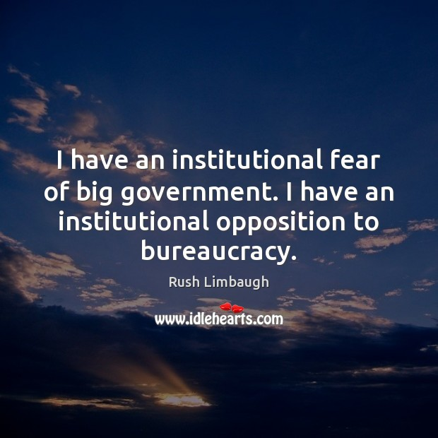 I have an institutional fear of big government. I have an institutional Image