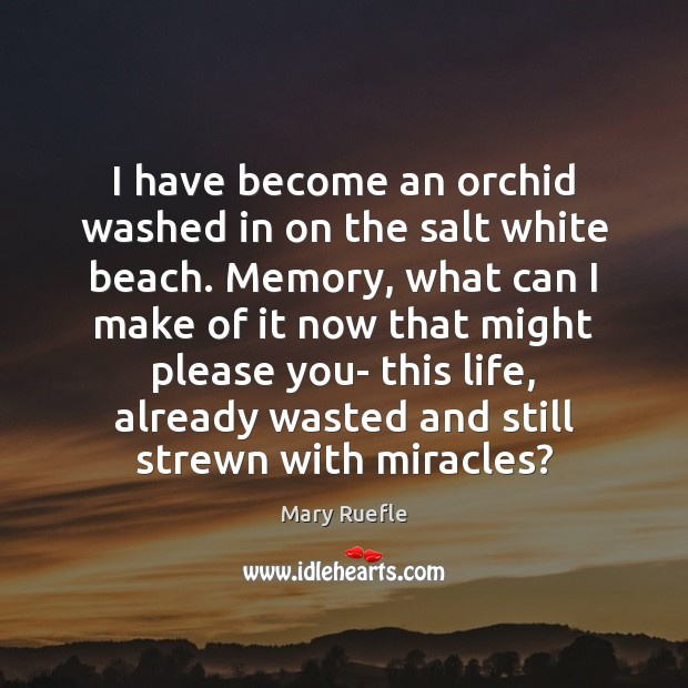 I have become an orchid washed in on the salt white beach. Mary Ruefle Picture Quote