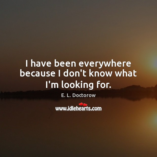 I have been everywhere because I don't know what I'm looking for. E. L. Doctorow Picture Quote
