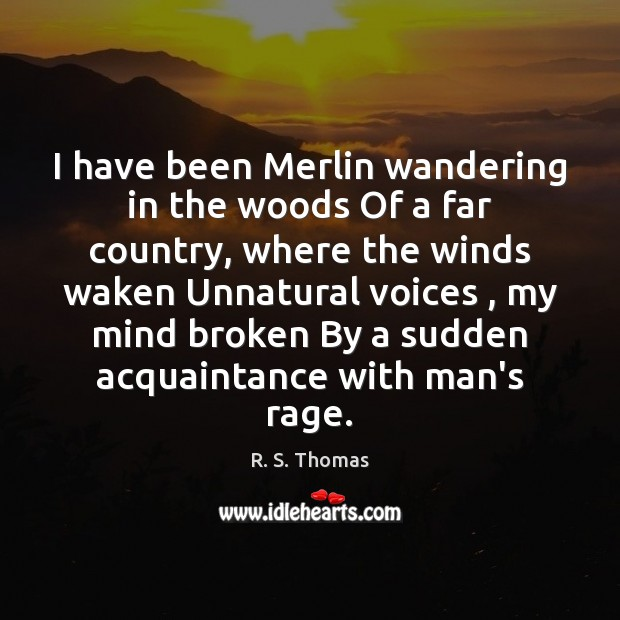 I have been Merlin wandering in the woods Of a far country, Image