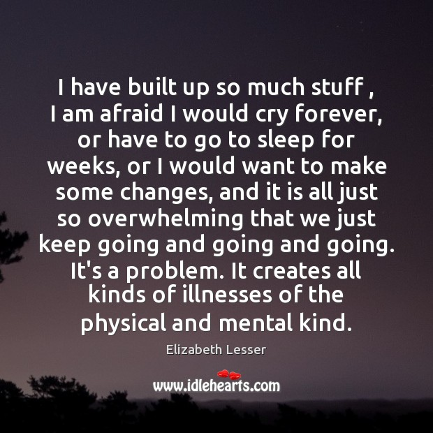 I have built up so much stuff , I am afraid I would Elizabeth Lesser Picture Quote