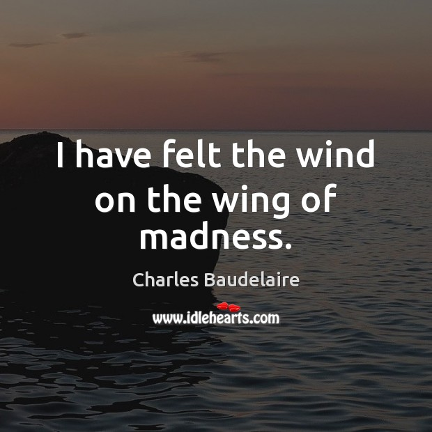 I have felt the wind on the wing of madness. Image