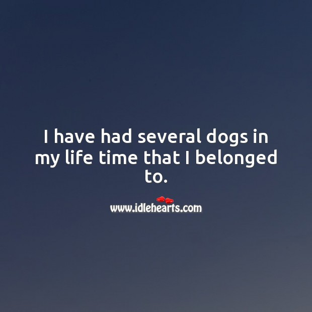 I have had several dogs in my life time that I belonged to. Pet Quotes Image