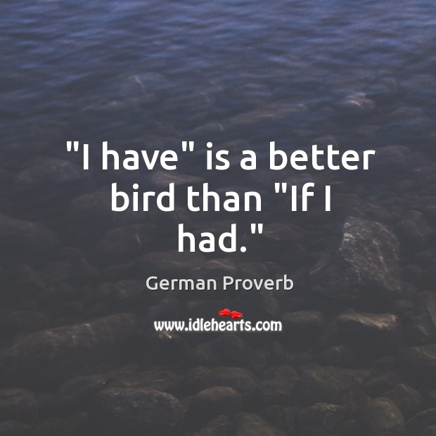 """I have"" is a better bird than ""if I had."" German Proverbs Image"