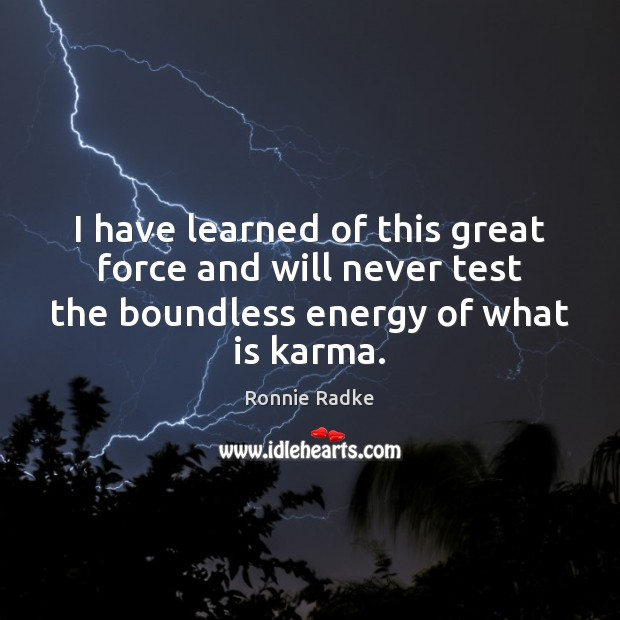 I have learned of this great force and will never test the Karma Quotes Image