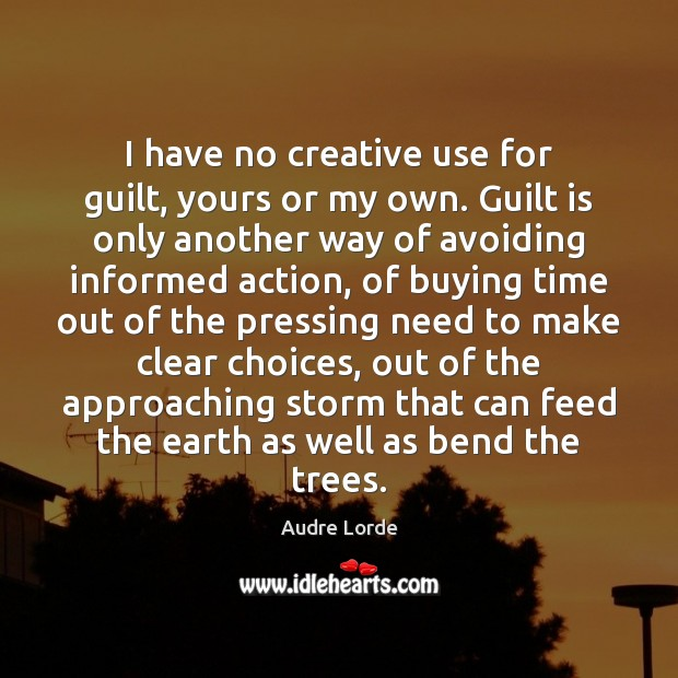 I have no creative use for guilt, yours or my own. Guilt Audre Lorde Picture Quote