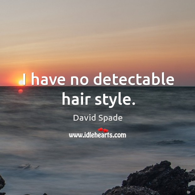I have no detectable hair style. David Spade Picture Quote