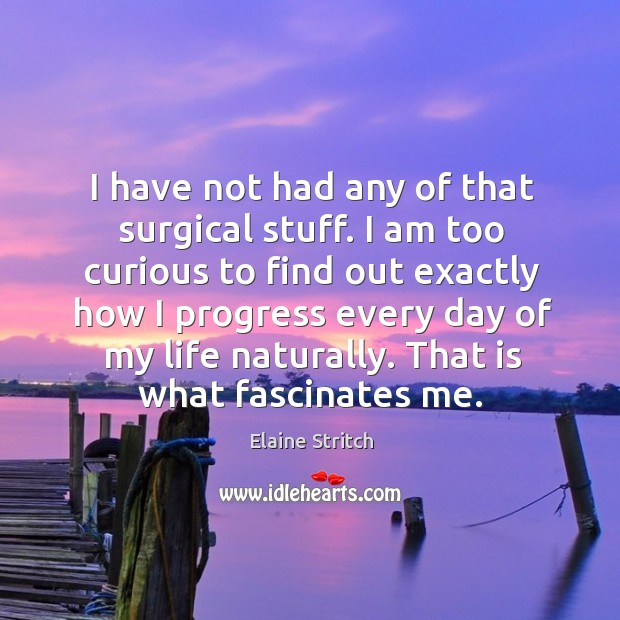 I have not had any of that surgical stuff. I am too Elaine Stritch Picture Quote