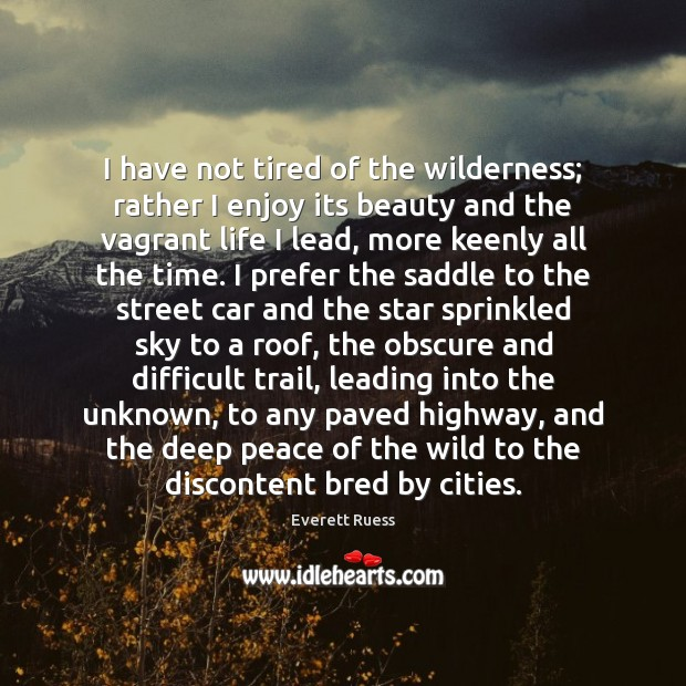 I have not tired of the wilderness; rather I enjoy its beauty Everett Ruess Picture Quote