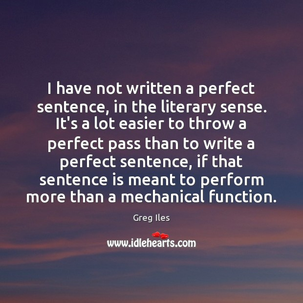 I have not written a perfect sentence, in the literary sense. It's Image