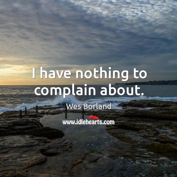 I have nothing to complain about. Wes Borland Picture Quote