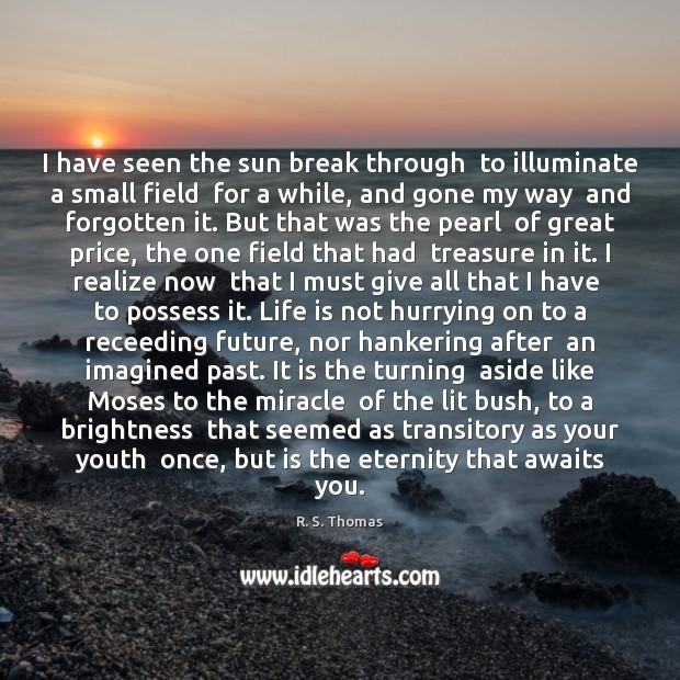Image, I have seen the sun break through  to illuminate a small field