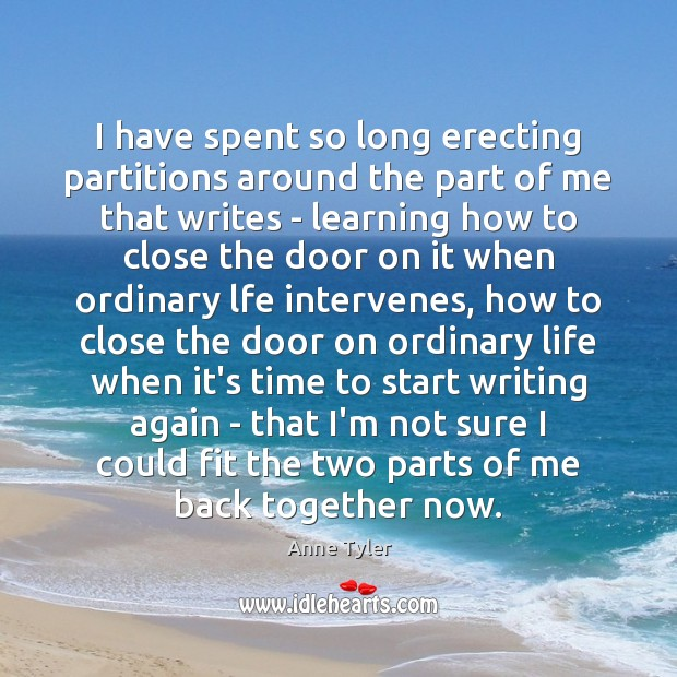 I have spent so long erecting partitions around the part of me Anne Tyler Picture Quote