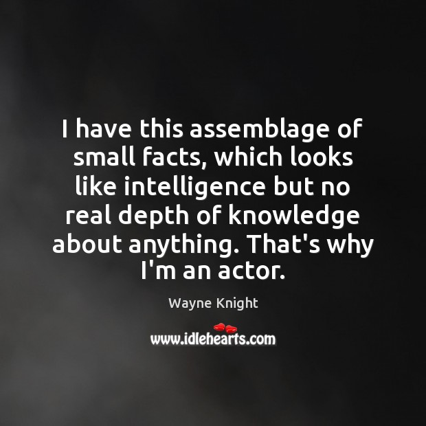 Image, I have this assemblage of small facts, which looks like intelligence but
