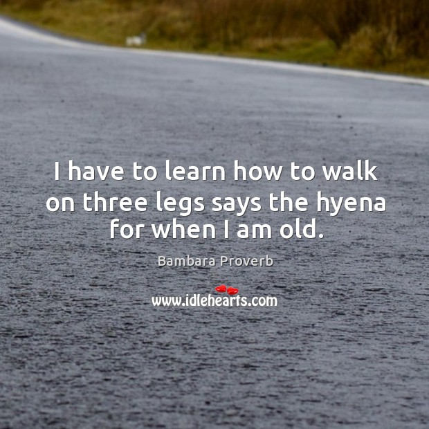 I have to learn how to walk on three legs says the hyena for when I am old. Bambara Proverbs Image