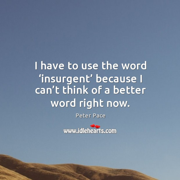 I have to use the word 'insurgent' because I can't think of a better word right now. Peter Pace Picture Quote
