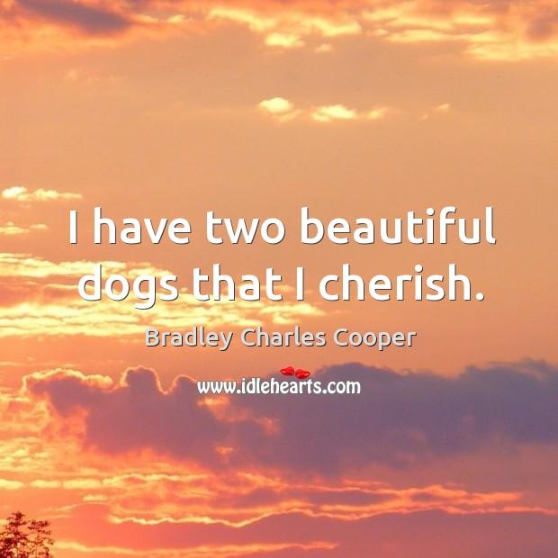 I have two beautiful dogs that I cherish. Image