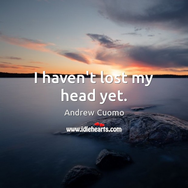 I haven't lost my head yet. Andrew Cuomo Picture Quote