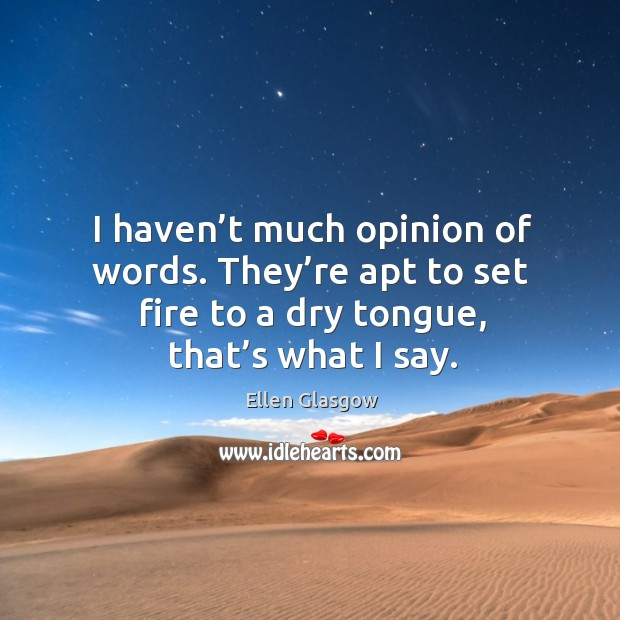 Image, I haven't much opinion of words. They're apt to set fire to a dry tongue, that's what I say.