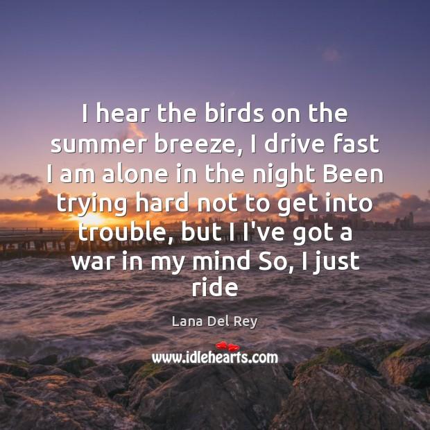 Image, I hear the birds on the summer breeze, I drive fast I
