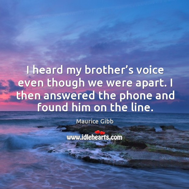 I heard my brother's voice even though we were apart. I then answered the phone and found him on the line. Maurice Gibb Picture Quote
