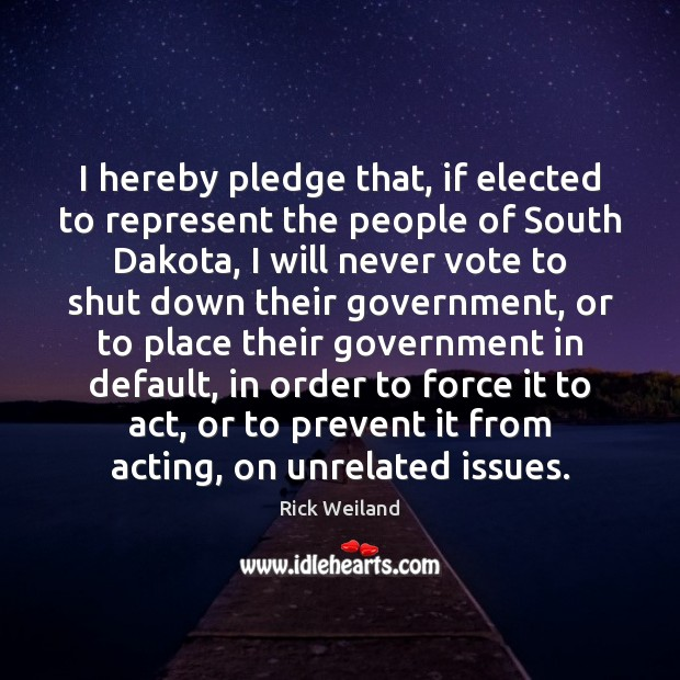 I hereby pledge that, if elected to represent the people of South Image