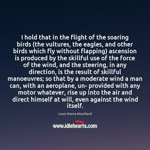 Image, I hold that in the flight of the soaring birds (the vultures,