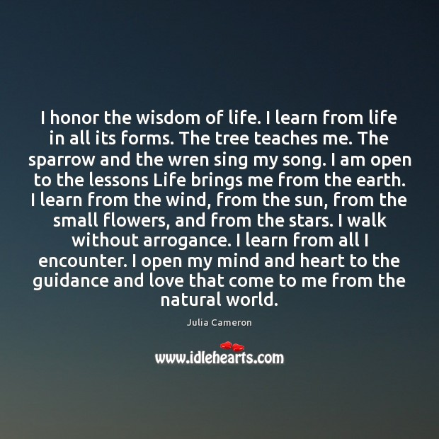 I honor the wisdom of life. I learn from life in all Julia Cameron Picture Quote
