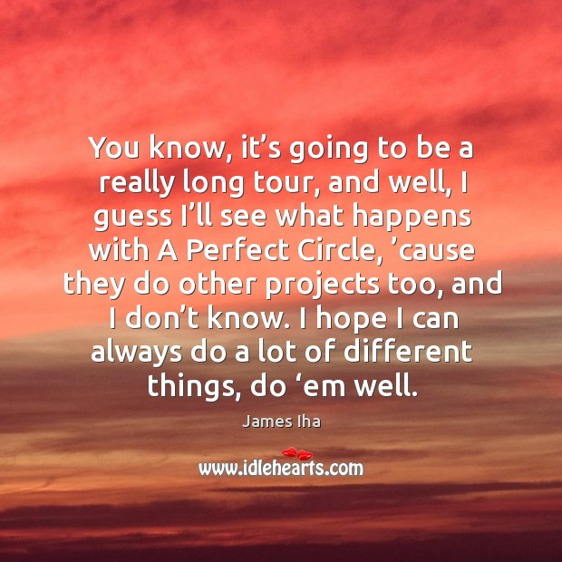 I hope I can always do a lot of different things, do 'em well. James Iha Picture Quote