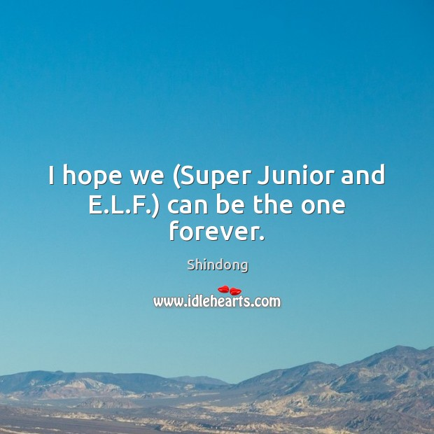 I hope we (Super Junior and E.L.F.) can be the one forever. Image