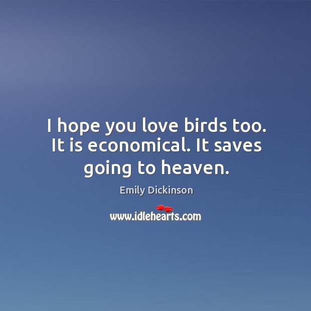 Image, I hope you love birds too. It is economical. It saves going to heaven.