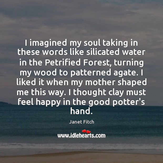 I imagined my soul taking in these words like silicated water in Image