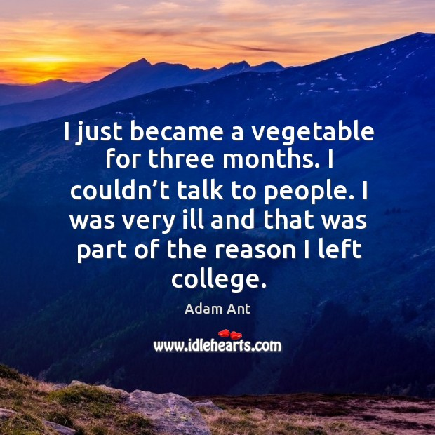 Image, I just became a vegetable for three months. I couldn't talk to people.