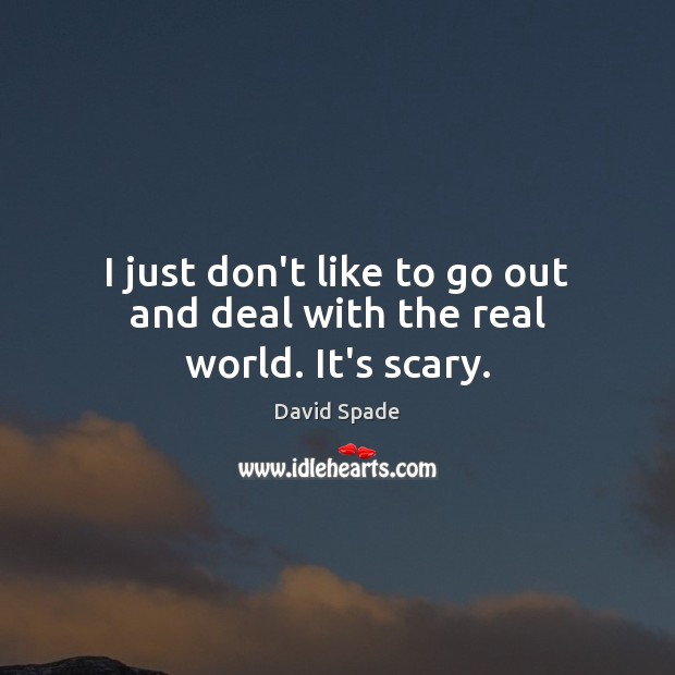 I just don't like to go out and deal with the real world. It's scary. David Spade Picture Quote