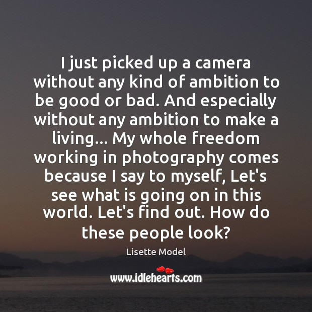 I just picked up a camera without any kind of ambition to Lisette Model Picture Quote