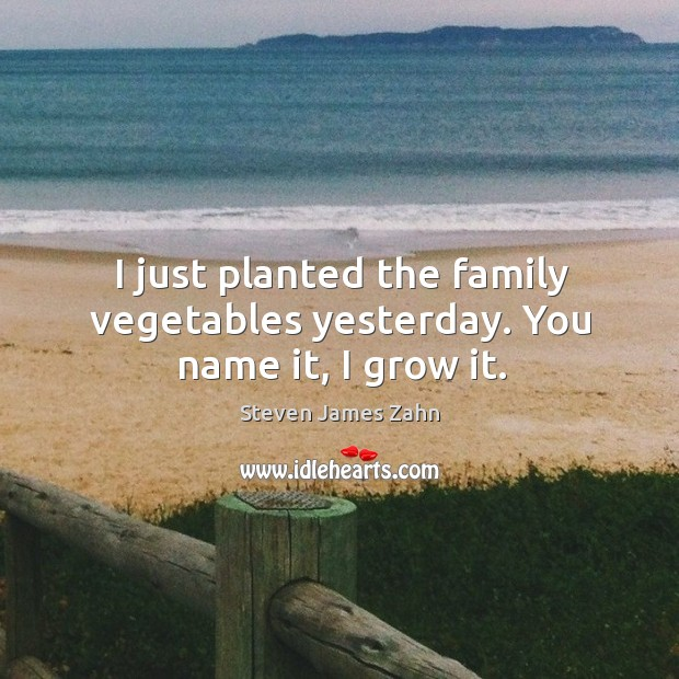 I just planted the family vegetables yesterday. You name it, I grow it. Image