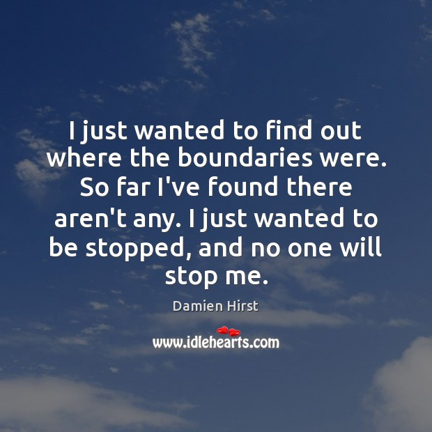 I just wanted to find out where the boundaries were. So far Damien Hirst Picture Quote