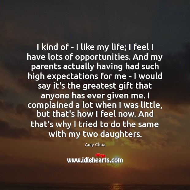 I kind of – I like my life; I feel I have Amy Chua Picture Quote