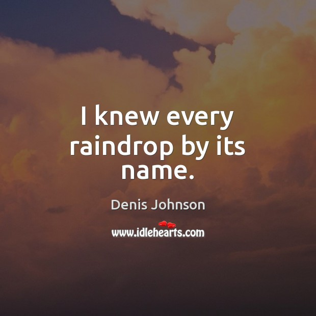 I knew every raindrop by its name. Denis Johnson Picture Quote