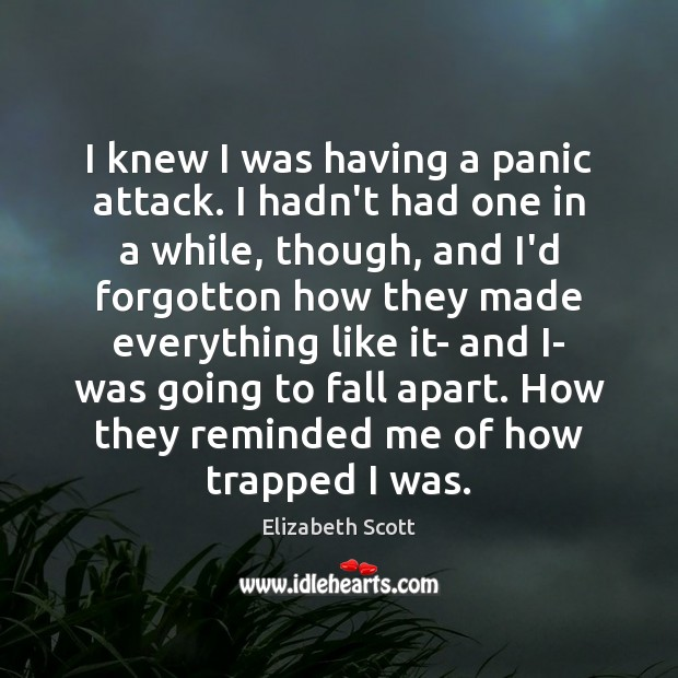 I knew I was having a panic attack. I hadn't had one Image