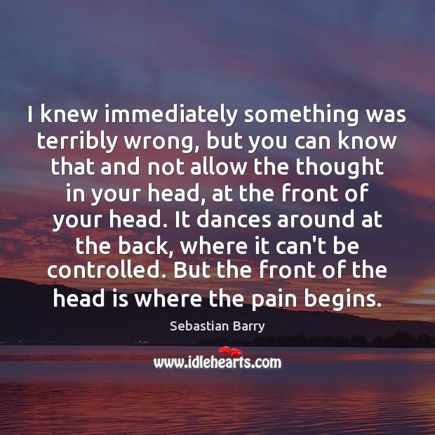 I knew immediately something was terribly wrong, but you can know that Sebastian Barry Picture Quote