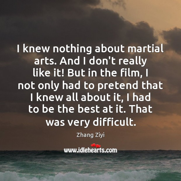 I knew nothing about martial arts. And I don't really like it! Zhang Ziyi Picture Quote