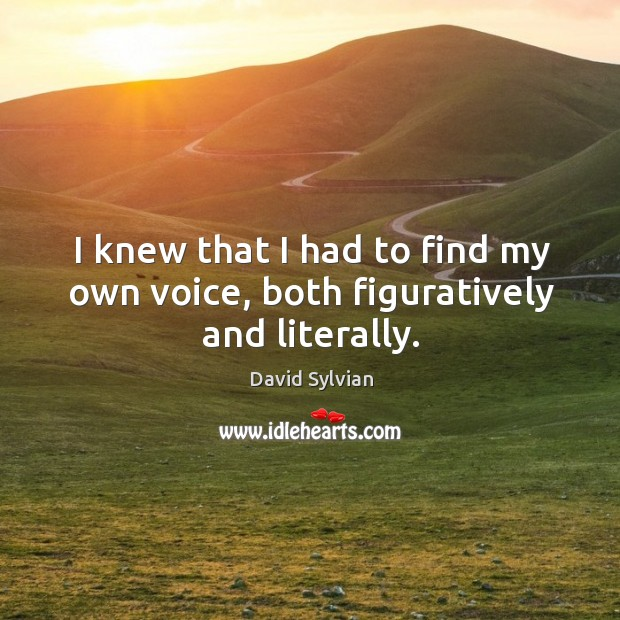 I knew that I had to find my own voice, both figuratively and literally. Image